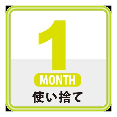 1ヶ月使い捨て